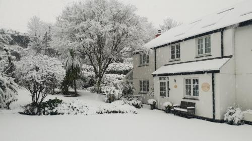 Christmas at Orchard Lodge